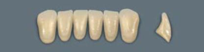 VITA MFT нижні фронтальні, колір 0M1, розмір L33