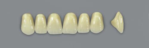 VITA MFT верхні фронтальні, колір 0M1, розмір T41