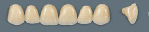 VITA MFT верхні фронтальні, колір 0M3, розмір T46