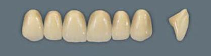 VITA MFT верхні фронтальні, колір 3L2.5, розмір R42
