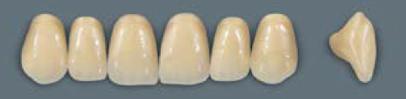 VITA MFT верхні фронтальні, колір 3L2.5, розмір R45